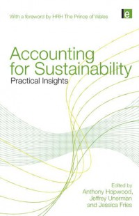 Image of Accounting for Sustainability practical insights
